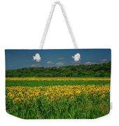 Sunflowers Weldon Spring Mo_dsc9830_16 Weekender Tote Bag
