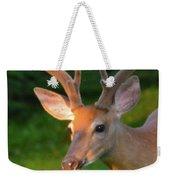 Sunkissed Buck Weekender Tote Bag