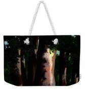 Sunlight And Shadows - Eucalyptus Majesties Weekender Tote Bag