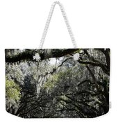 Sunlight And Shadows On Live Oaks Weekender Tote Bag