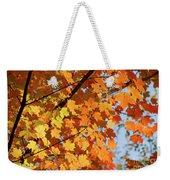 Sunlight In Maple Tree Weekender Tote Bag