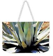 Sunlight On Blue Agave - Digital Art Weekender Tote Bag