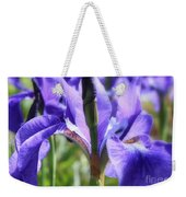 Sunlight On Blue Irises Weekender Tote Bag by Carol Groenen