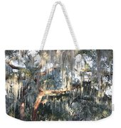 Sunlight On Mossy Tree Weekender Tote Bag