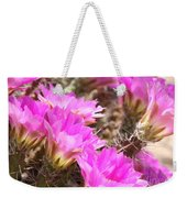 Sunlight On Pink Cactus Blooms Weekender Tote Bag