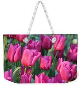 Sunlight On Pink Tulips Weekender Tote Bag