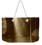 Sunlight On Swing - Sepia Weekender Tote Bag