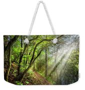 Sunlight On The Trail Weekender Tote Bag