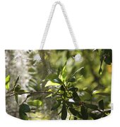 Sunlight Through The Oak Weekender Tote Bag