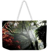Sunlight Through The Tree In Misty Morning 1. Weekender Tote Bag