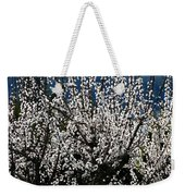 Sunlit Apricot Blossoms Weekender Tote Bag
