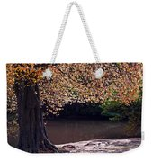 Sunlit Autumn Canopy Weekender Tote Bag