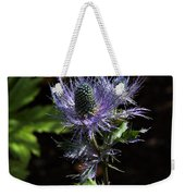 Sunlit Bloom Of Alpine Sea Holly Weekender Tote Bag