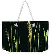 Sunlit Grasses Weekender Tote Bag