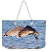 Sunlit Gull Wings Weekender Tote Bag