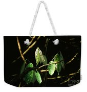 Sunlit Leaves Weekender Tote Bag