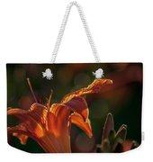 Sunlit Lilly Weekender Tote Bag