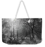 Sunlit Woods, West Dipton Burn Weekender Tote Bag