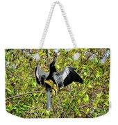 Sunning Anhingas Bird One Weekender Tote Bag