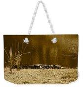 Sunning Gator Weekender Tote Bag
