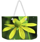 Sunning In The Sun Weekender Tote Bag