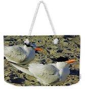 Sunning Terns Weekender Tote Bag