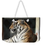 Sunning Tiger Weekender Tote Bag