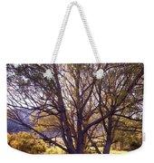 Sunny Mono Tree Weekender Tote Bag