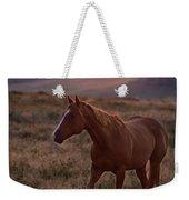Sunrise Horse Weekender Tote Bag