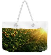 Sunset And Rows Of Sunflowers Weekender Tote Bag