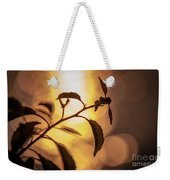 Sunset Of An Ant Weekender Tote Bag