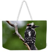 Sunshine Needed - Male Downy Woodpecker Weekender Tote Bag