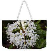 Sunshine On A Rainy Day Weekender Tote Bag