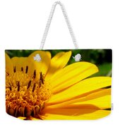 Sunshine Sally Weekender Tote Bag