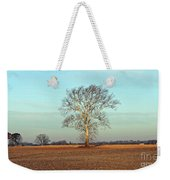 Sunshine Sycamore Weekender Tote Bag