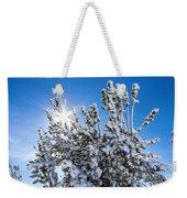 Sunshine Through Snow Covered Tree Weekender Tote Bag