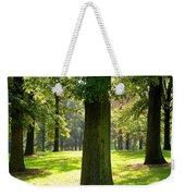 Sunshine Trees Forest Park Weekender Tote Bag
