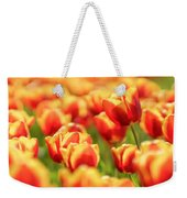 Sunsoaked Tulips #7 Weekender Tote Bag