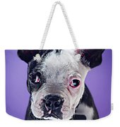 Super Pets Series 1 - Bugsy Close Up Weekender Tote Bag