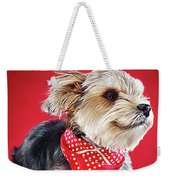 Super Pets Series 1 - Super Moose Chilling Weekender Tote Bag
