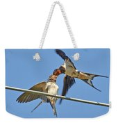 Swallow And Cub Weekender Tote Bag
