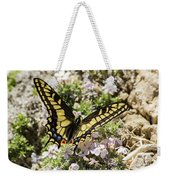 Swallowtail At Sand Wash Weekender Tote Bag