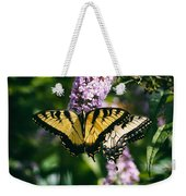 Swallowtail Butterfly At The Maryland Zoo Weekender Tote Bag