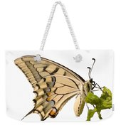 Swallowtail Butterfly Vector Isolated Weekender Tote Bag