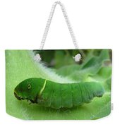 Swallowtail Caterpillar Weekender Tote Bag