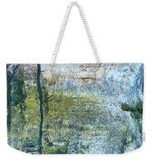 Swamp Light Weekender Tote Bag