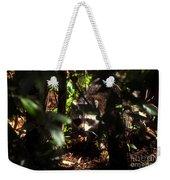 Swamp Raccoon Weekender Tote Bag