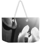 Swan Lake In Winter -  Kingsbury Nature Weekender Tote Bag