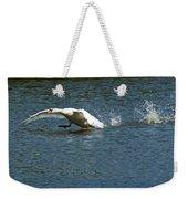 Swan Landing 2 Weekender Tote Bag