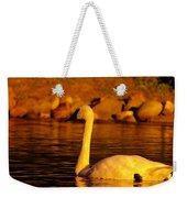 Swan Near Sundown Weekender Tote Bag